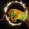 Цирки в Клетне